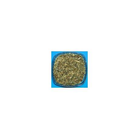 herbe de chelidoine